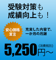 5,250円(消費税別)~